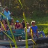 The Best Airboat Rides in Southwest Florida