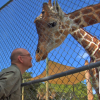 Tim Tetzlaff talks about the Naples Zoo and its Mission