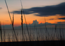 Sunset at the Beach in Naples, FL