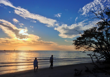 Barefoot Beach, A Place Where Beauty Abounds and Nature Thrives…