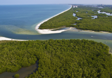 Unsurpassed 4K Aerial Video of Barefoot Beach Preserve – Naples, FL