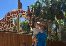 Get Closer at the Naples Zoo