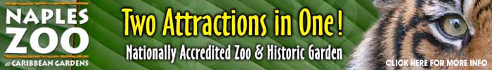 Click here to learn more about the Naples Zoo