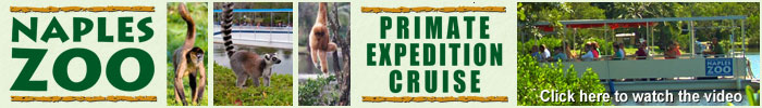 Click here to see the Primate Expedition Cruise
