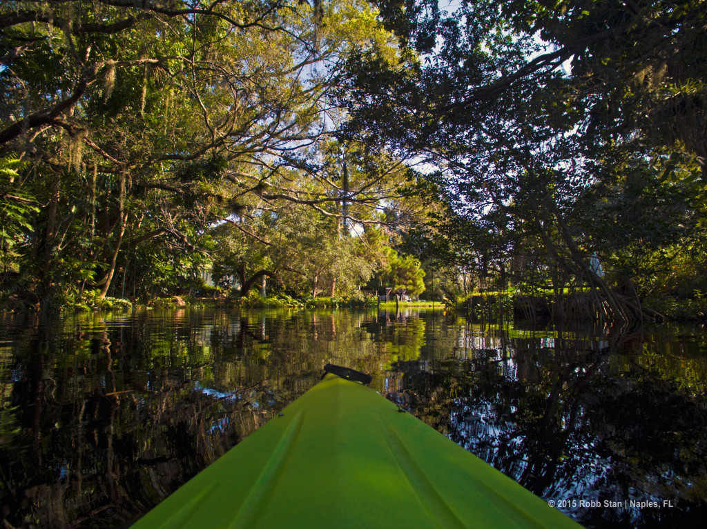 Kayaking on the Imperial River in Bonita Springs, FL